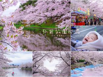 日本第一櫻花!夢幻賞櫻勝地在一枚。青森弘前公園櫻花
